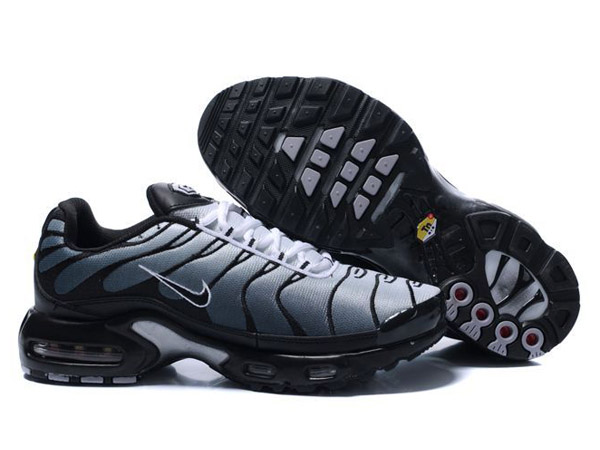 requin chaussure nike
