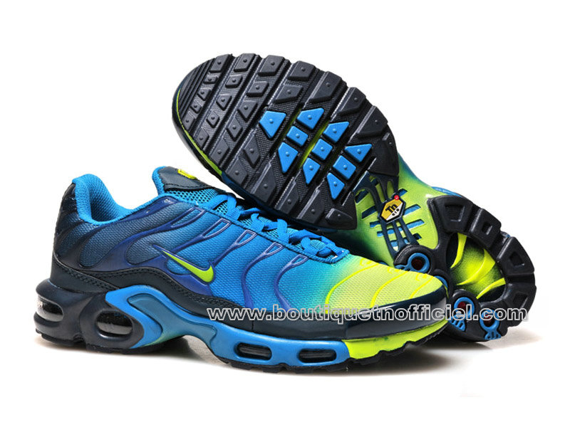 chaussure nike tn homme bleu